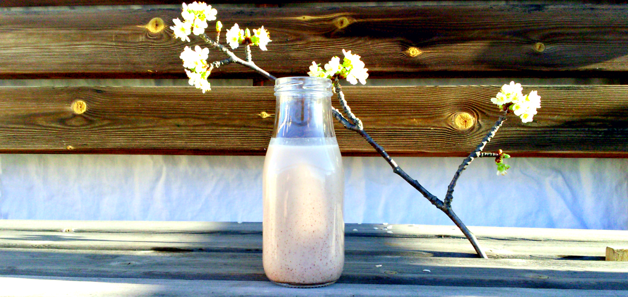 Domowe mleko makowe - przepis DIY