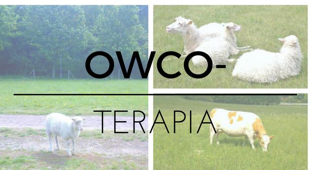 Owcoterapia. Codzienne przyjemności